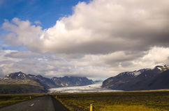 Multitud de las ovejas que corren en el camino en Islandia Imagen de archivo