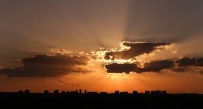 Multitud de pájaros en una puesta del sol Imagenes de archivo