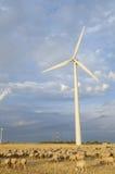 Multitud y molinoes de viento foto de archivo libre de regalías