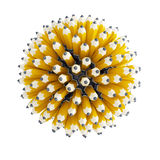 Multitude pencil Stock Images