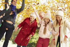 Multl一代家庭投掷的叶子在秋天庭院里 库存图片