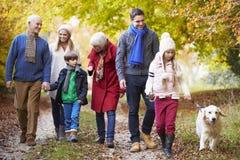 Multl utvecklingsfamilj som promenerar Autumn Path With Dog Arkivbilder