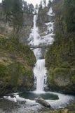 Multnomah cade nell'inverno Fotografie Stock