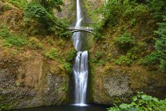 Multnomah cade nella gola del fiume Columbia, Oregon Fotografia Stock Libera da Diritti