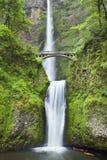 Multnomah cade nella gola del fiume Columbia, Oregon, U.S.A. Fotografia Stock
