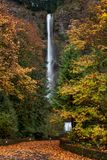 Multnomah cai cachoeira no outono fotos de stock royalty free