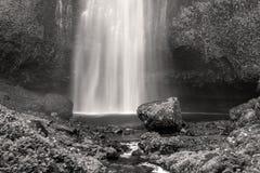 Multnomah cai em preto e branco foto de stock royalty free