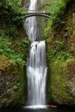 Multnomah cai no desfiladeiro do rio de Colômbia, Oregon imagem de stock