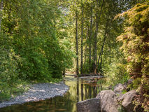 Multnomah Creek Royalty Free Stock Image