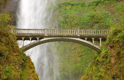 Multnomah Falls Stock Photos