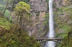 Multnomah Falls Stock Photography