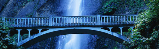 Multnomah Falls. This is a close up of the Multnomah Falls and footbridge. It has a 542 ft. drop from the top Royalty Free Stock Images