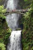 Multnomah Falls Royalty Free Stock Photos