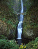 Multnomah Falls. A waterfall and bridge in the Pacific Northwest royalty free stock images