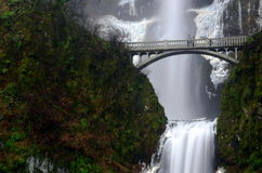 Multnomah Falls alongs the Historic Columbia River Highway Royalty Free Stock Photography