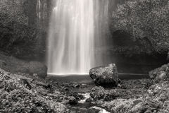 Multnomah Falls in Black and White royalty free stock photo
