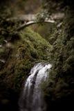 Multnomah Falls bridge. Multnomah Falls waterfall with bridge in Oregon Royalty Free Stock Photography