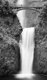 Multnomah Falls BW Royalty Free Stock Photo