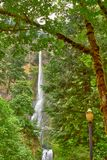 Multnomah Falls after the fire in Oregon. royalty free stock image
