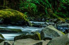 Free Multnomah Falls In Portland Oregon Stock Photos - 44747953