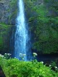 Multnomah Falls, OR Royalty Free Stock Image