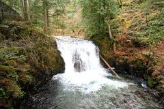 Multnomah Falls in Oregon Royalty Free Stock Photography