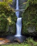 Multnomah Falls Stock Photos
