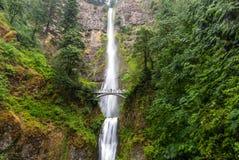 Multnomah famoso cade nella gola del fiume Columbia, Oregon immagine stock libera da diritti