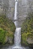 Multnomah icônico cai com cenário verde musgoso Fotografia de Stock Royalty Free