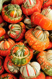 Multy color fall gourdes. An Ohio Amish farmstand had a\this colorfull collection of gordes for sale Stock Photo