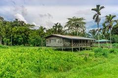 Mulu (Sarawak), Borneo stock image