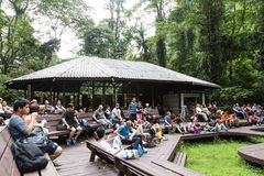 Mulu, Sarawak, September 1, 2018: Tourists gather to watch the d. Aily bats exodus from Deer Caves at Mulu National Park for feeds of insects and food stock images
