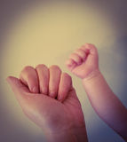 Mum and baby hands. Mother & baby hands on a  white background Royalty Free Stock Images