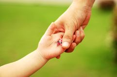Mum&child's hands. A little girl is dilivering a hairpin to her mother Stock Image