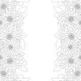 Mum, Chrysanthemum Flower Outline Border isolated on White Background. Vector Illustration.  vector illustration