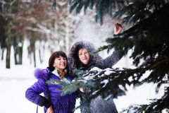 Mum with a daughter and their dog walking in winter park stock image