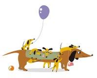 Mum-dog. And its playful children Stock Image