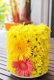 Mum and gerbera flower Stock Image