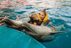 Mum with kid floats with dolphins Royalty Free Stock Images