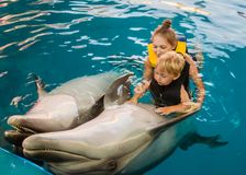 Mum with kid floats with dolphins. In pool stock photography
