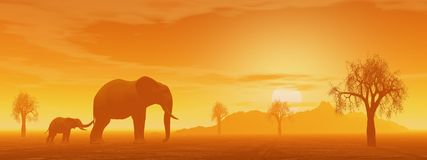 Mum and little elephant in the savannah. Little elephant holding its mum's queue in the savannah with baobabs by sunset Stock Photo