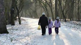 Mum que anda no gelo do inverno da neve da estrada com seus gêmeos filme