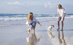 Mum and son playing with dog on the beach Stock Photos