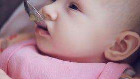 Mum voedt met een lepel haar leuke pasgeboren babypuree van courgetteclose-up stock videobeelden