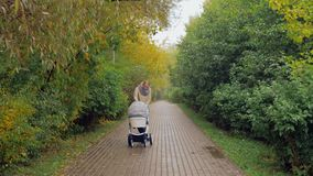 Mum walking with baby walking in autumn park stock footage