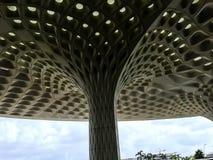 Mumbai's T2 крупного аэропорта потолок казны астетически захватывающий отлитый в форму стоковое изображение rf