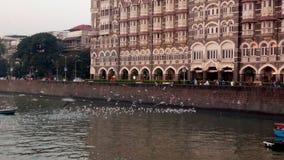 mumbai Индии строба стоковая фотография