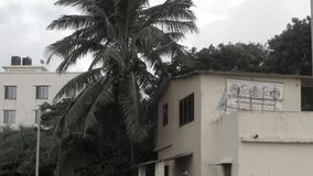 Old house. In mumbai at beach with tree stock photography
