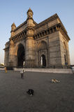 MUMBAI/INDIA 19th JANUARY 2007 - Dogs lie in front of the Gateway to India royalty free stock photo