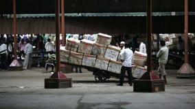 MUMBAI, INDIEN - MÄRZ 2013: Waren bereit zum Transport stock video footage